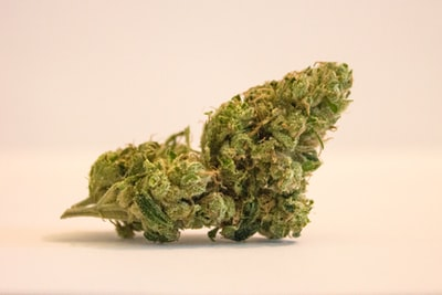 What is weed and why are gamers taking it?
